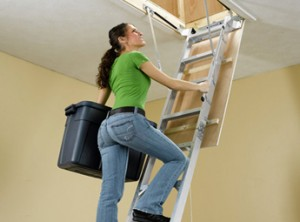 Ladder-Attic-Mezzanin_345x255