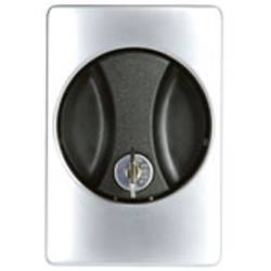 Flush Handle (Satin), Key Operated