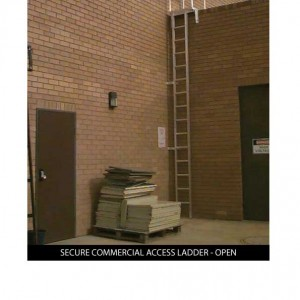 Custom_SECURE-COMMERCIAL-ACCESS-LADDER-OPEN